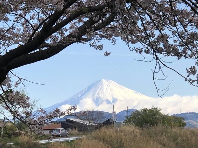 4月なのに真っ白な富士山